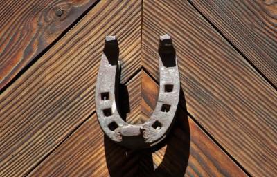 Iron horseshoe